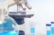 Гистология кисты яичника: этапы проведения и результаты