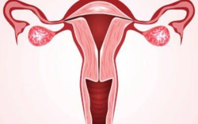 Прогревание яичников при воспалении и болях
